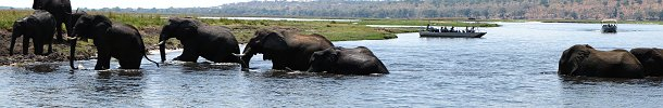 Click here to download wp_chobenationalpark03.zip